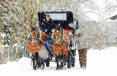 Winter Horse-drawn Carriage Tour in Garmisch-Partenkirchen