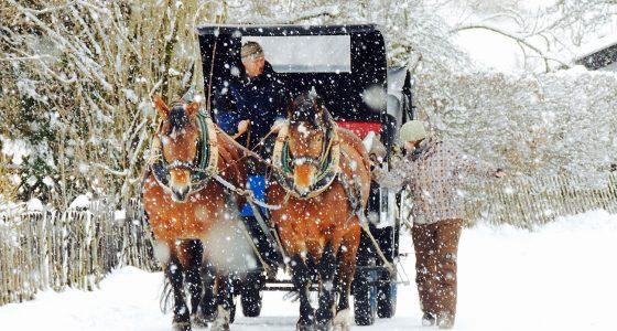 Winter Horse-drawn Carriage Tour in Garmisch-Partenkirchen
